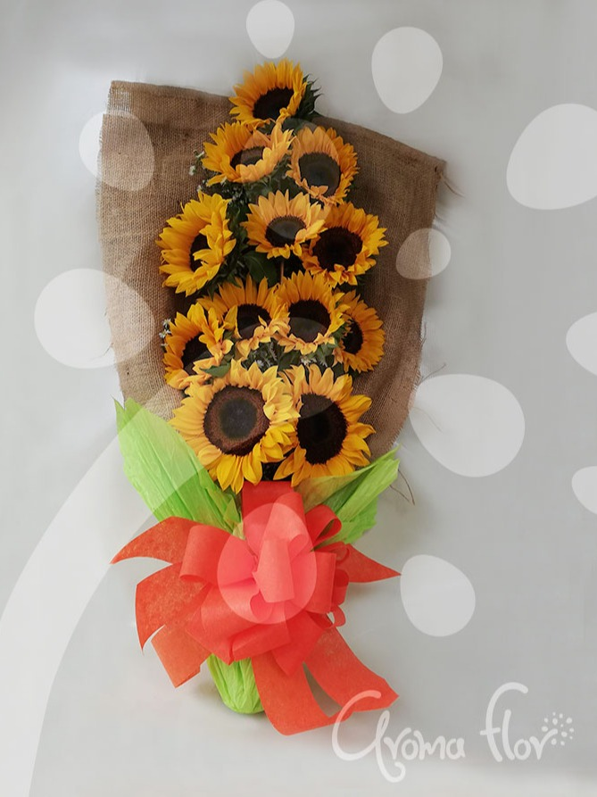 Girasoles Gloss
