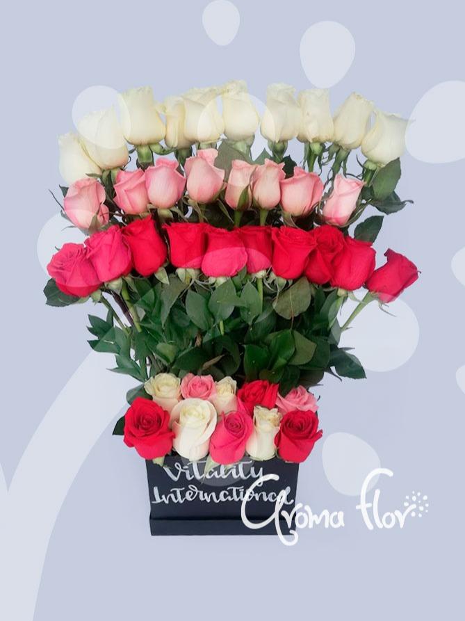 Arcoiris 24 rosas