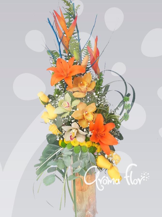 Liricas Orquídeas