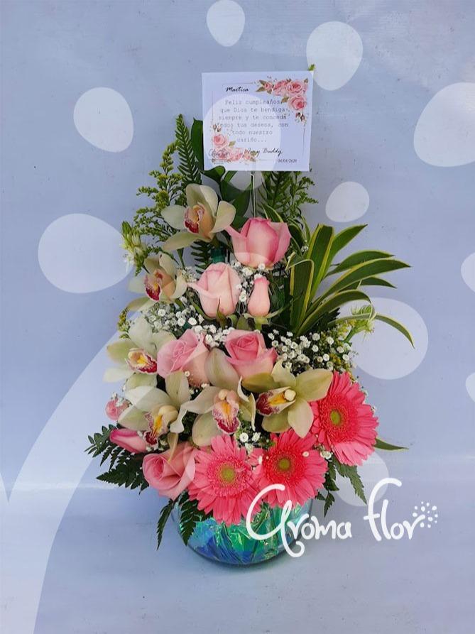 Delicadas Orquídeas