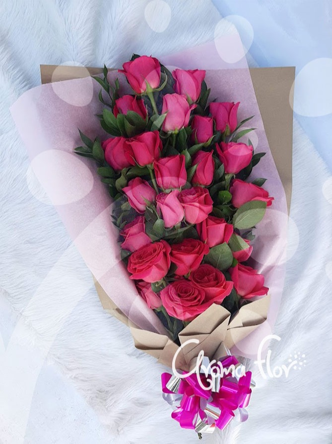 Manual fucsia 24 rosas